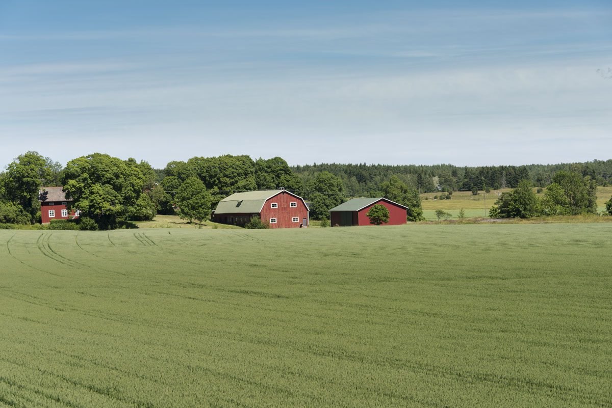 aland-finland-field
