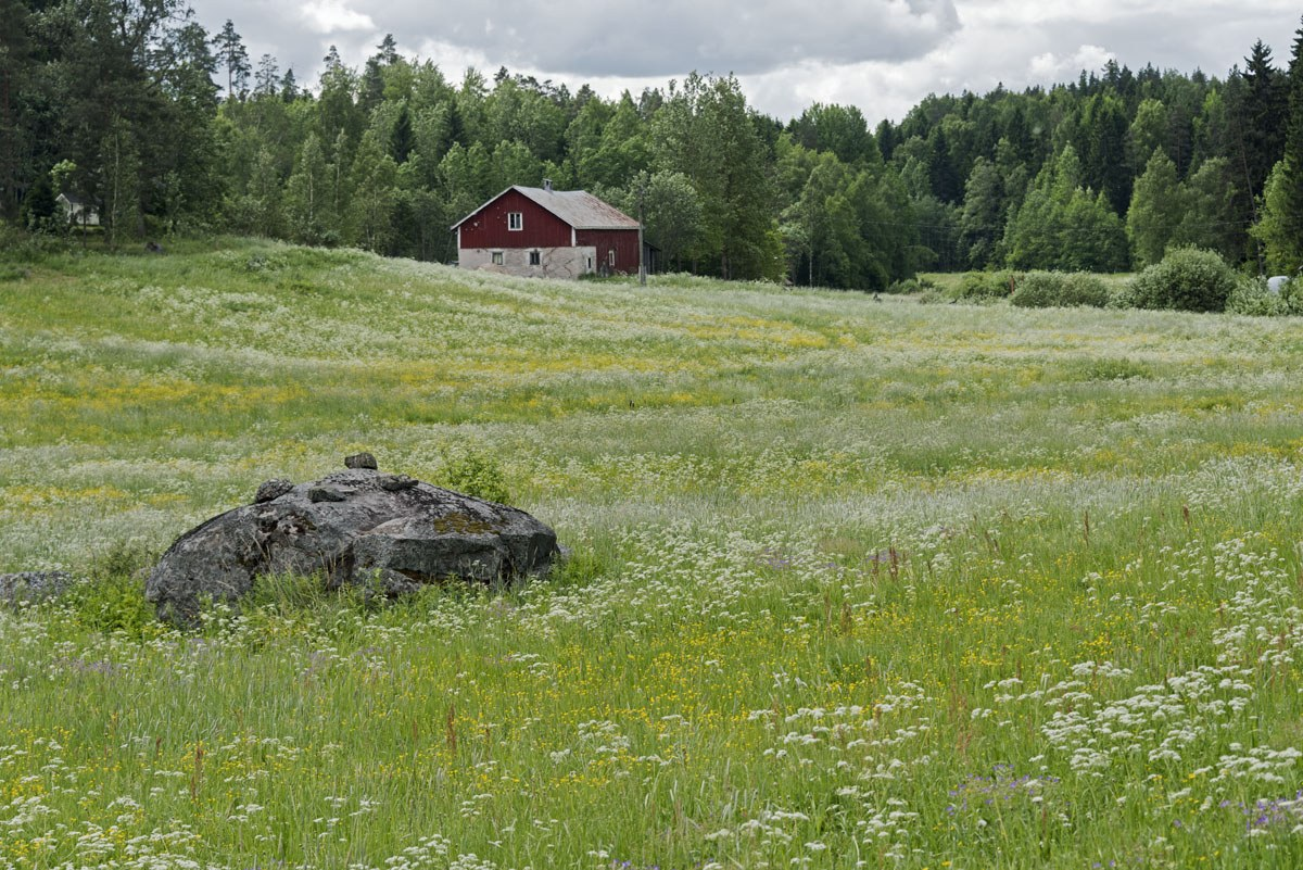 countryside finland