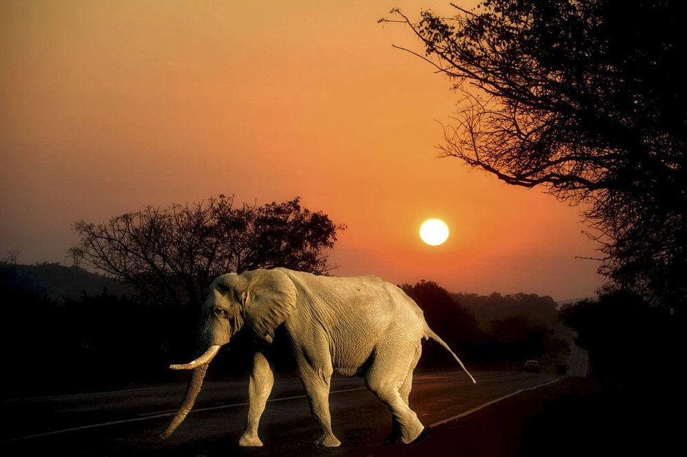 southern africa sunset