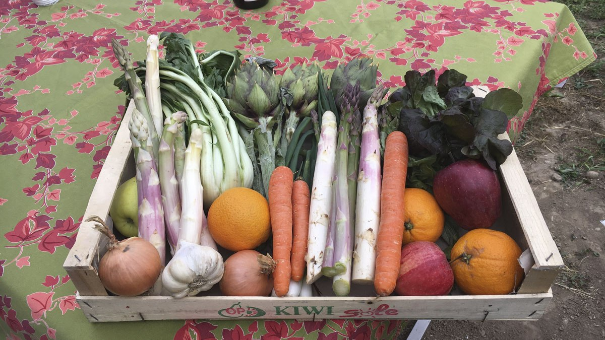 road trip farm produce