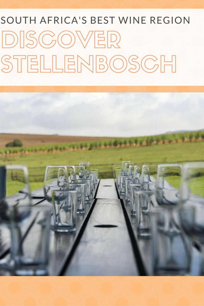 Where to drink wine in South Africa and the best wine in Stellenbosch