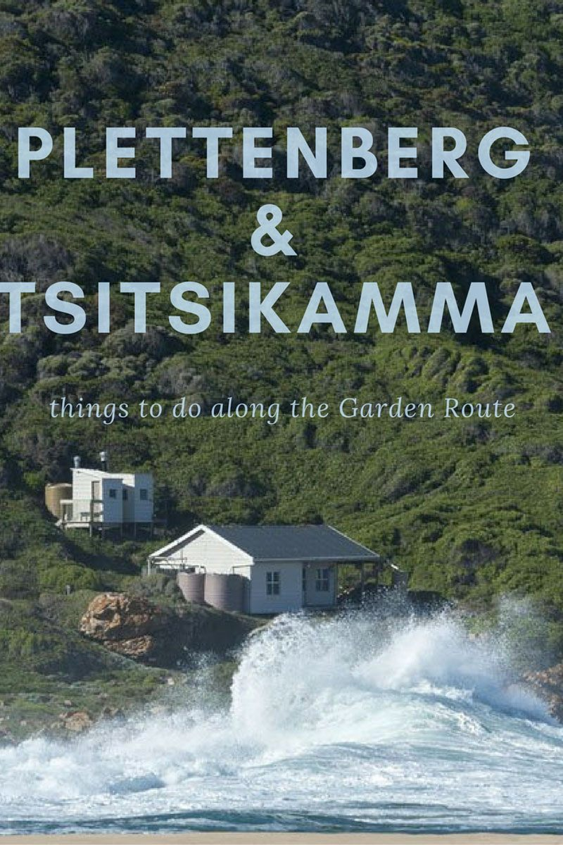 things to do in tsitsikamma and plettenberg south africa