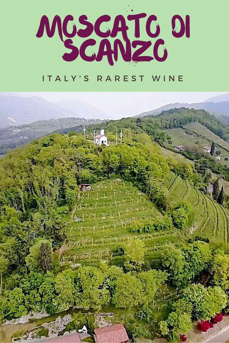 Moscato di Scanzo rarest italian wine