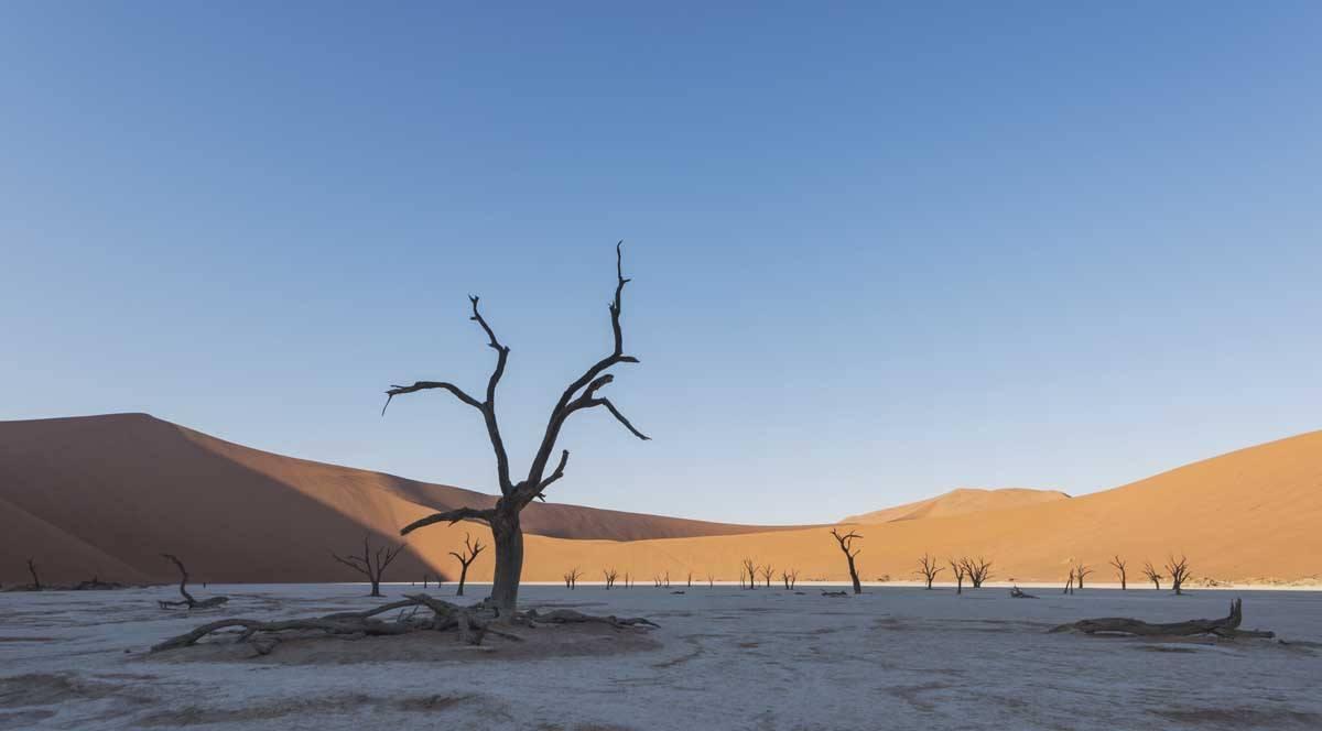 overlanding namibia safari sossusvlei