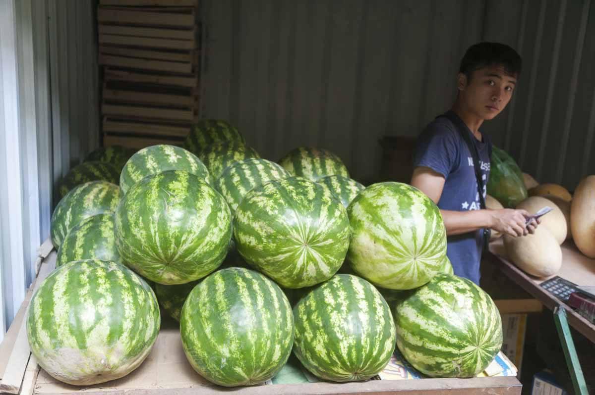 karakol bazaar watermelons