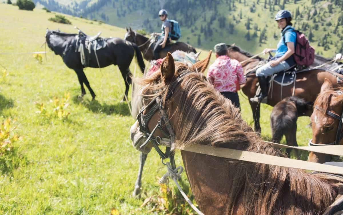 jyrgalan horse trek