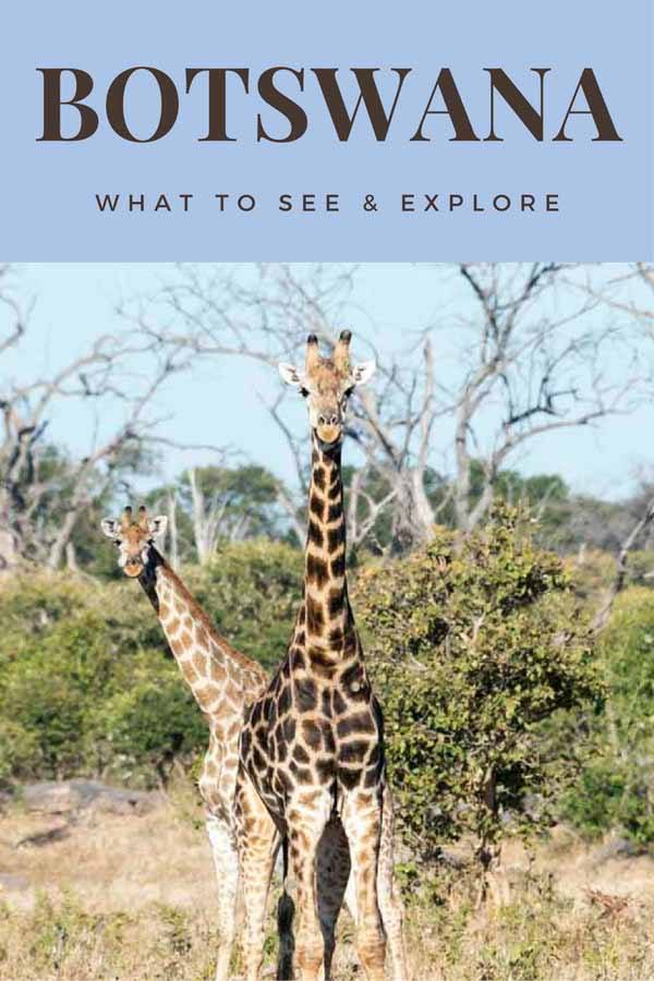 botswana what to see pin