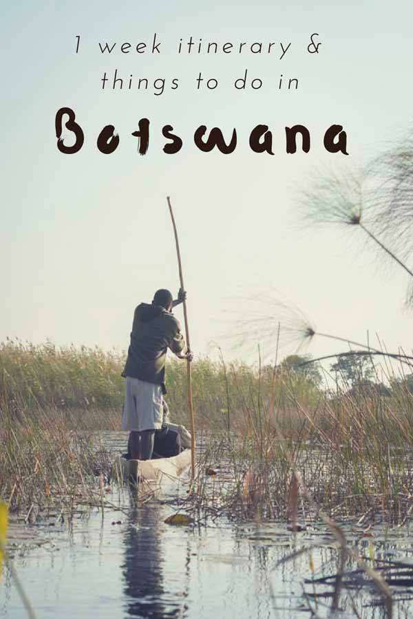 things to do in botswana pin