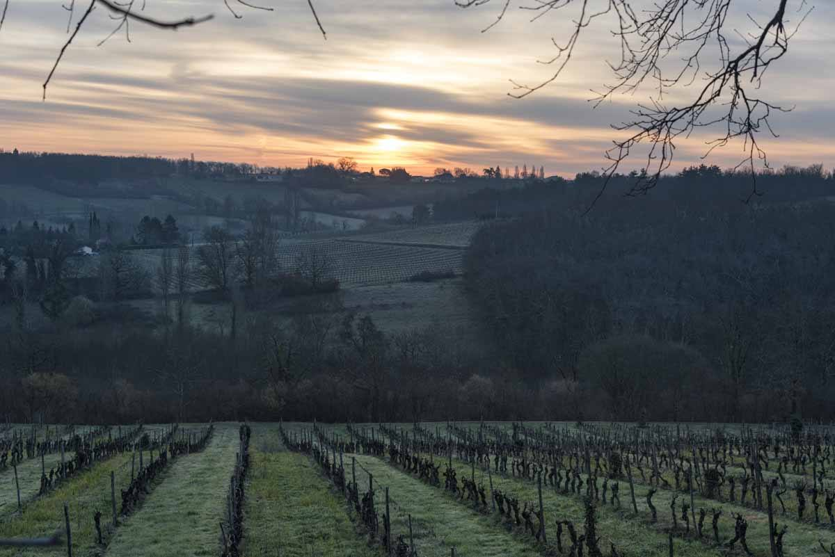chateau feely sunset