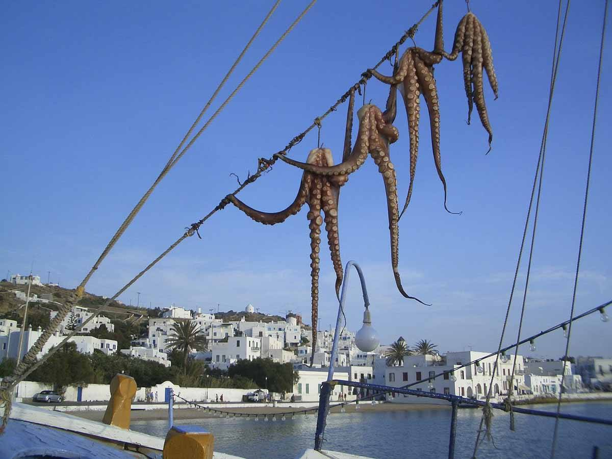 mykonos octopus drying