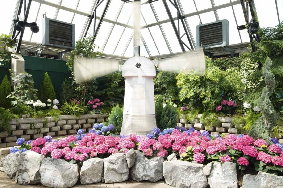 muttart conservatory edmonton pyramid