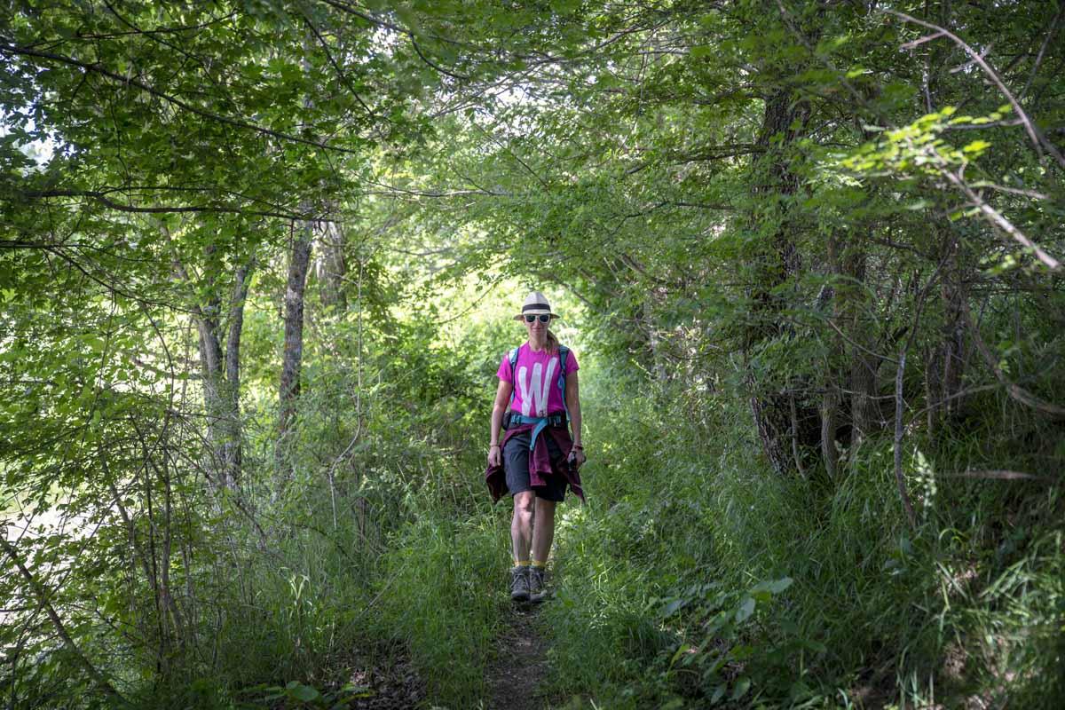 hiking forest emilia romagna