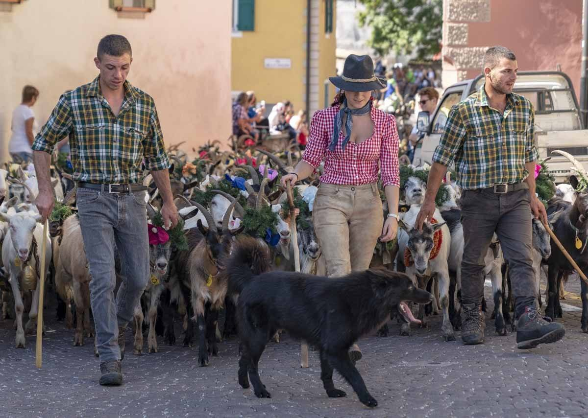desmontegada goat procession