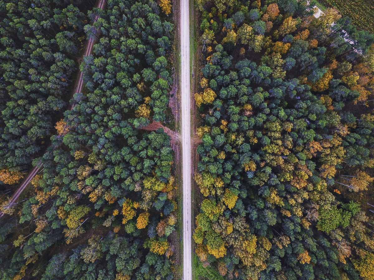 latvia autumn drone