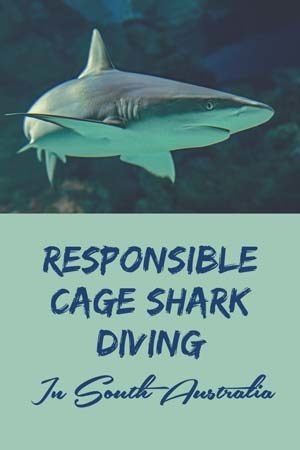 australia responsible shark cage diving