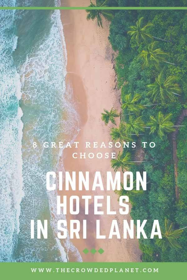 cinnamon sri lanka pin