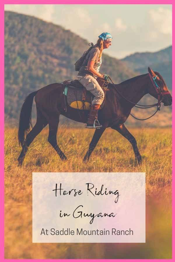 horse riding guyana pin 1
