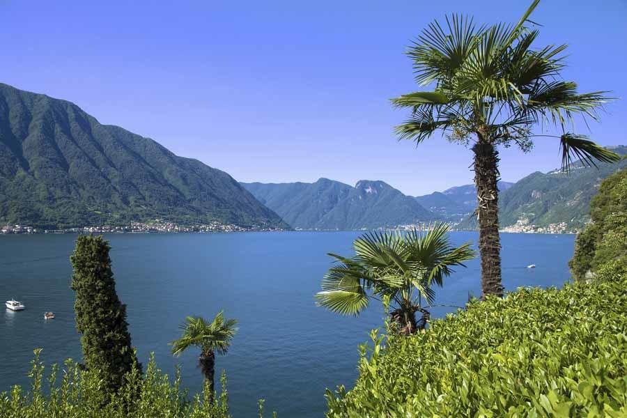 lake como palms