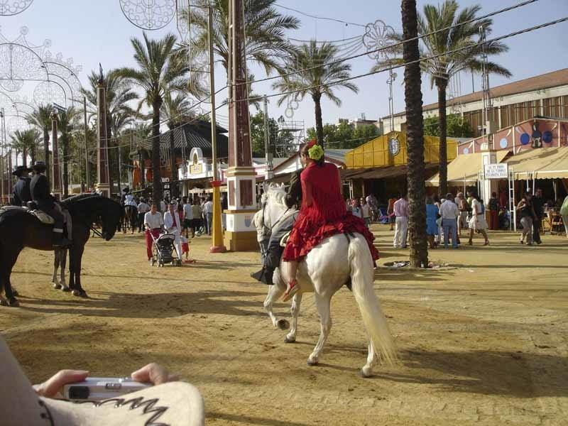 spanish-festivals-jerez-horse