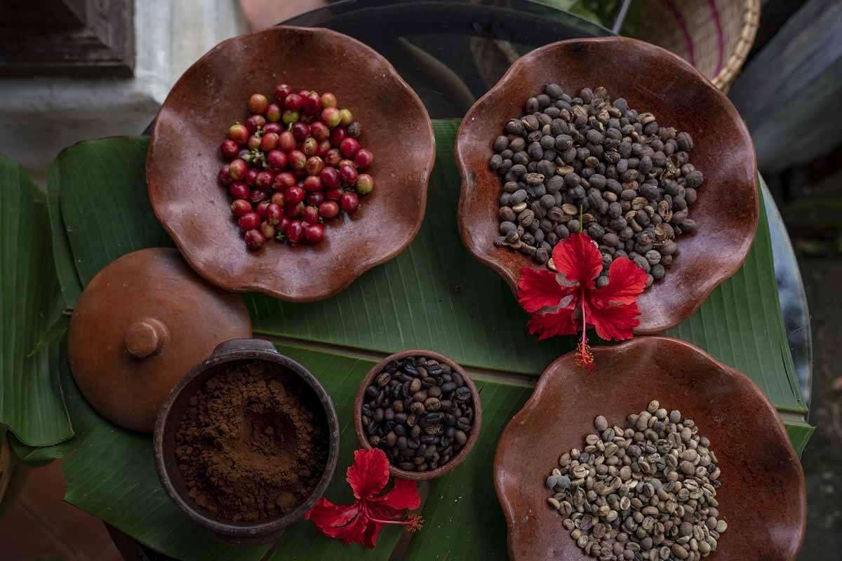organic coffee bali