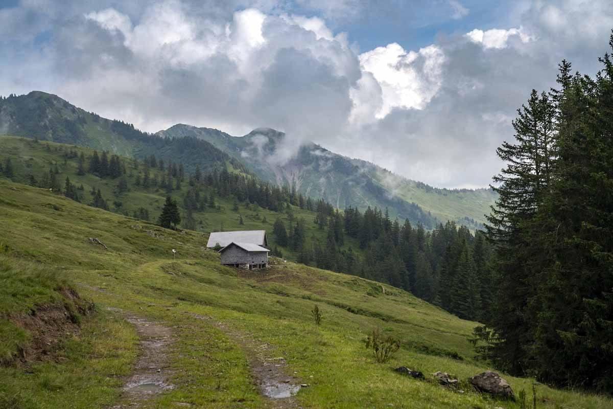 visit bregenzerwald pastures