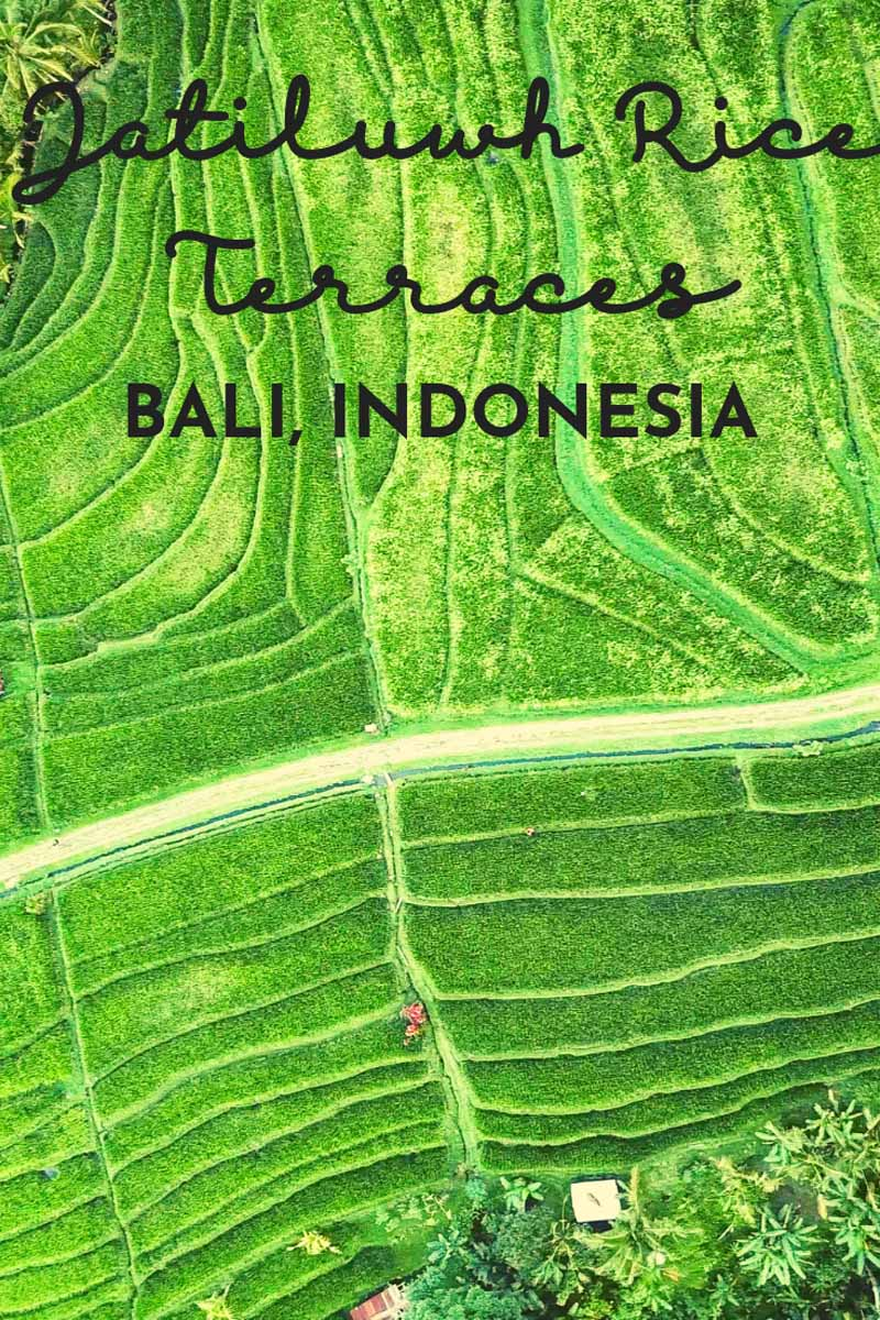 jatiluwih rice terraces pin 2