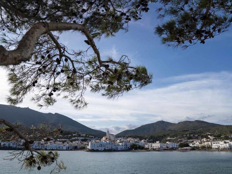cadaques view trees