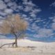 things to do in white sands national park nm