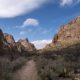 things to do big bend national park