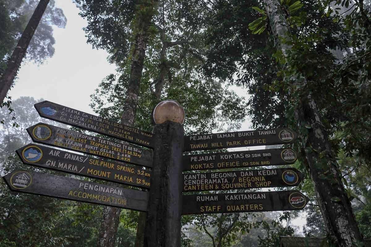 tawau_hills_park